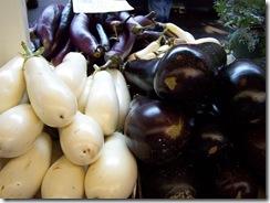 Types_of_Eggplant
